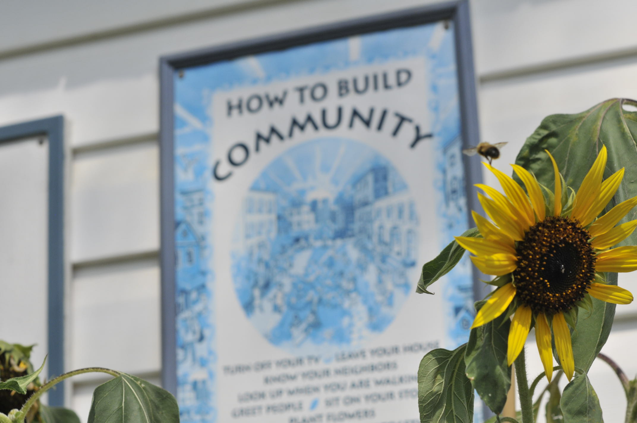 I'm going to tell you a story- Open Letter from Acadia Garden and Art Society
