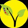 Acadia Community Garden and Art Society